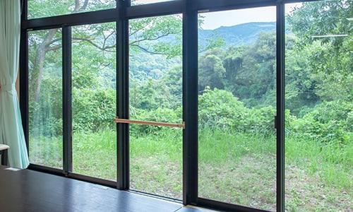窓から見える森